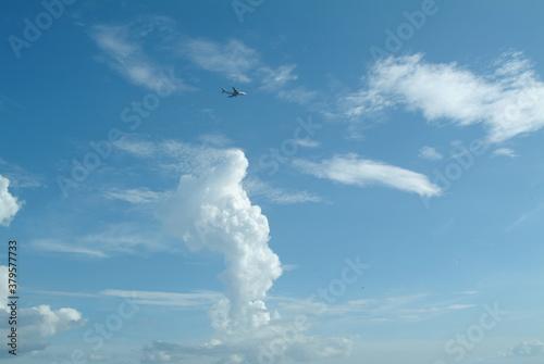 Obraz na plátně 夏空を飛ぶ航空機