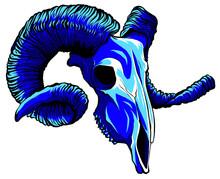 Vector Blue Goat Tattoo Skull Illustration Graphics Art