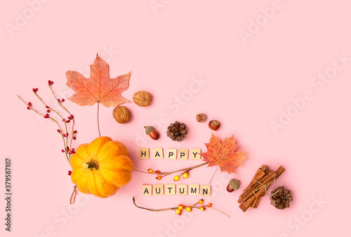 Fototapeta pumpkin, maple leaves, cones, nuts, cinnamon on pink background. Thanksgiving, Halloween Festive concept. flat lay. copy space obraz