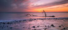 Sunset And Driftwood On Sker B...