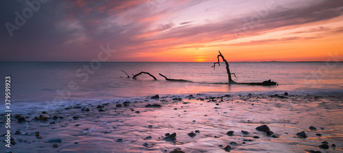 Photo Sunset and driftwood on Sker Beach near Porthcawl, South Wales UK