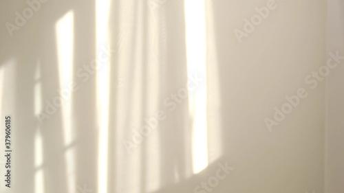 Morning sun lighting the room, shadow background overlays Canvas Print