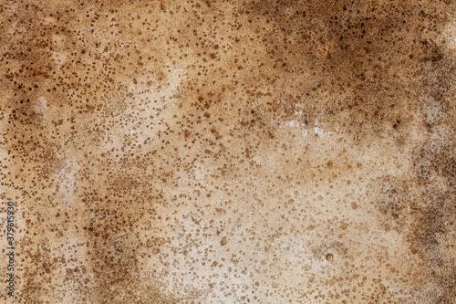 Obraz na plátně brown dirty concrete wall. background for designer