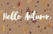 Hello Autumn Text On Fall Leav...