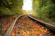 canvas print picture - Bahngleise im Herbstlichen Wald