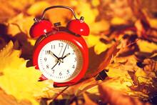 Red Alarm Clock On Yellow Autu...