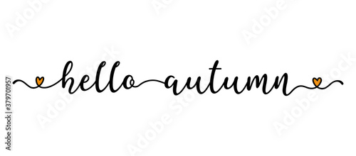 Fototapeta Hand sketched Hello Autumn quote as banner. Lettering for poster, label, sticker, flyer, header, card, advertisement, announcement.. obraz