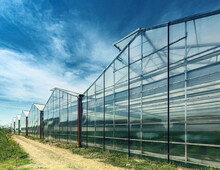 The Exterior Of A Modern Glasshouse