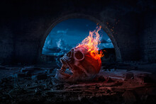 Skull Burned In Fire In Dark H...
