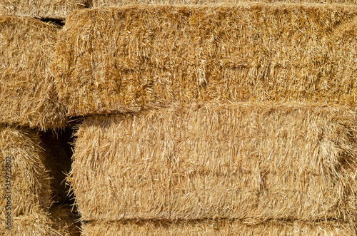 The texture of dry straw in rectangular bales. Wallpaper Mural