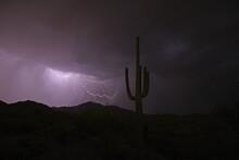 Lightning Over The Desert