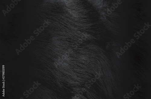 Canvastavla Luxury black metal gradient background with distressed natural fur texture