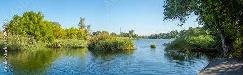 Fotografija Autumn landscape, vegetation along the river