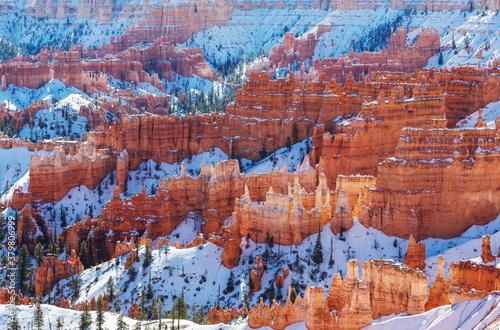 Canvastavla Winter in Bryce