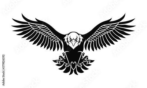 eagle silhouette Fototapeta