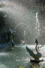 Fountain At Forsyth Park Savannah, Georgia