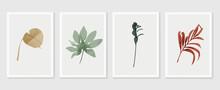 Botanical Wall Art Vector Set....