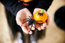 Small Pumpkin And Black Glamor...
