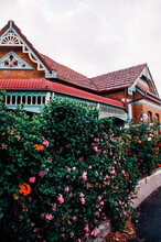 Cute Old Home With Colourful Flower Bush