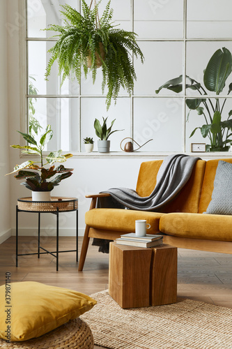 Fototapeta Interior design of scandinavian open space with yellow velvet sofa, plants, furniture, book, wooden cube and personal accessories in stylish home staging. Template. obraz