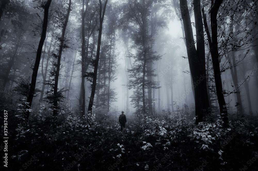 Fototapeta man in dark scary fantasy forest