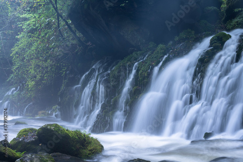 Fototapeta 秋田県の滝