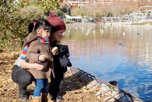 Little Girl Feeding Birds At Lake.