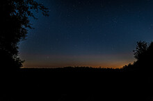 Silhouette Of Grass In A Field And Trees In The Forest Just After Sunset Under A Starry Sky With Stars