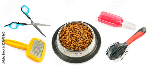 Pet supplies. Dry food, combs, shampoo and scissors isolated on white background.