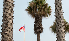 An American Flag Waving In The Breeze Framed By Three Tall Palm Trees Under Hazy Skies