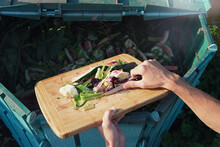 Person Throws Organic Waste Fr...