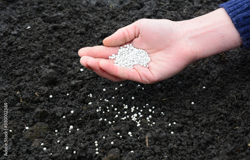A farmer is adding mineral fertilizers into the soil to replenish minerals and get higher crop yields Fotobehang