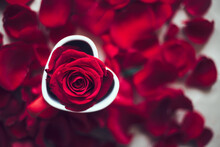 Red Rose In A Heart-Shaped Cup