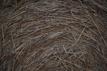 Bale Of Hey In Detail