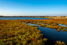 Coastal Wetlands, Known As The Inner Bolsa Bay, Taken From The Footbridge At The Bolsa Chica Ecological Reserve, A Bird Sanctuary, On The First Day Of Fall.