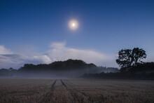 Rising Fog In A Field Under Moonlight. Norfolk, UK.