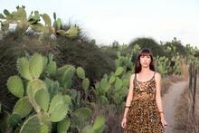 Walking On Cactus Path