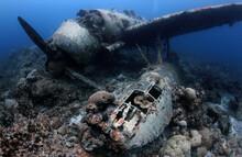 WW II Airplane Wreck