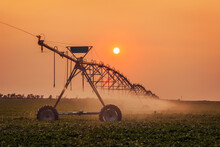 Silhouette Of Irrigation Syste...