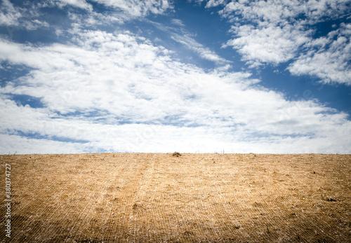 Fotografija Erosion control blanket and sky