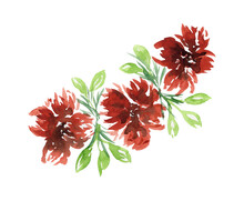 Bright Watercolor Red Flowers ...