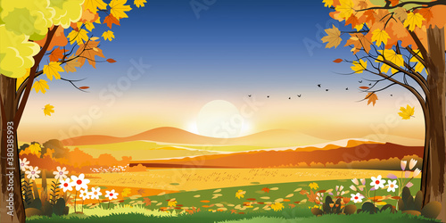 Fototapeta Autumn landscapes of Countryside with sunset and blue and pink sky,Panoramic of mid autumn with farm field, mountains, leaves falling from trees in orange foliage. Wonderland in fall season obraz