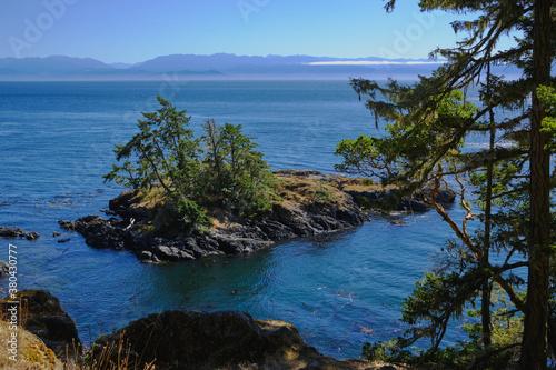 Fototapeta Forested islet offshore near Sooke, BC