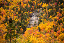 Arethusa Falls.in The Crawford Notch, Just West Of Bartlett, New Hampshire.  Hardwood Trees Are Showing Peak Fall Color In The White Mountain National Forest.