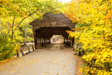 Albany Covered Bridge, White M...