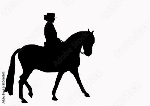 Fotografie, Obraz cavalier cheval promenade