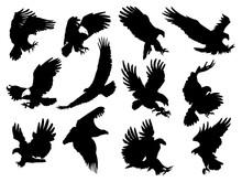 Set Silhouette Eagles Illustra...
