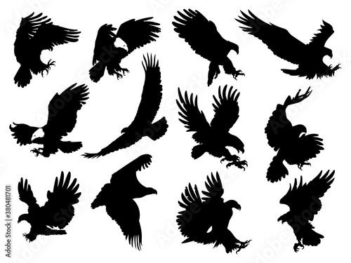 set silhouette eagles illustration birds prey Canvas