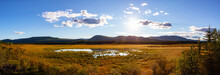 Beautiful Panoramic View Of The Meadow Fields During A Sunny Sunset In Fall Season. North Of Whitehorse, Yukon, Canada. Nature Background Panorama