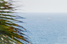 Sailboat On Calm Waters, Seen From Palm Beach